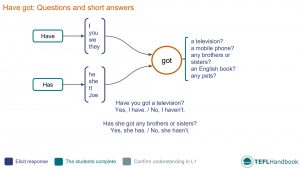 EFL - ESL Lead-in activity for have got questions | Beginner