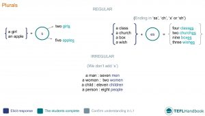 EFL - ESL Lead-in activity for teaching plurals | Beginner