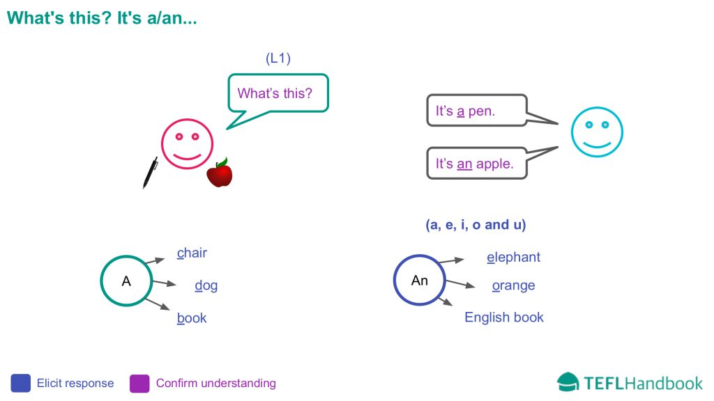 EFL - ESL Lead-in activity for beginners | What's this