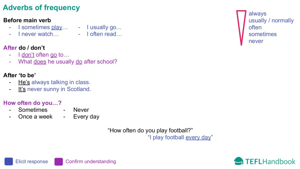 EFL - ESL Lead-in activity for elementary | Adverbs of frequency
