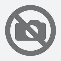 ESL Lesson plan B1 - Obligation prohibition and advice
